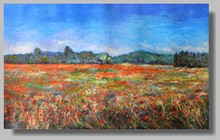 coquelicot provence-penture paysage